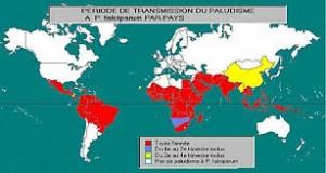 Pandemie Epidemie Endemie